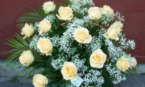 MyFlora Brasov– o floare printre flori!